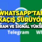 WhatsApp, Telegram ve Sinyal Özelliklerinin Karşılaştırılması