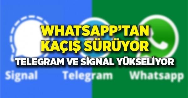 whatsapp telegram signal karşılaştırması